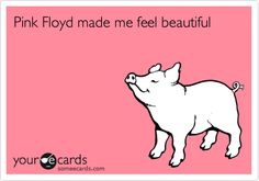 Pink Floyd made pigs feel beautiful!
