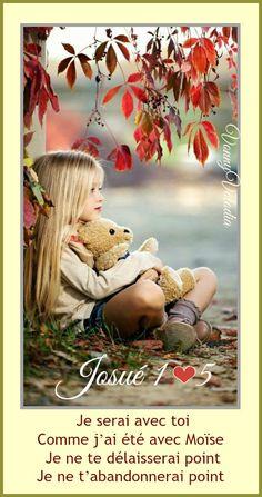 Moise, Images, Teddy Bear, Christmas, Animals, Xmas, Animales, Animaux, Teddy Bears