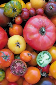Weird heritage tomatoes (Tomato Ten Colour Heirloom Mix)