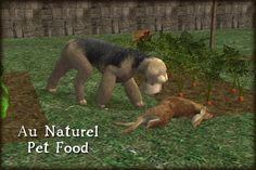 Want your pets to feed themselves instead of begging at a bowl? These items spawn all the animals your pets need to hunt, kill, and eat for themselves.