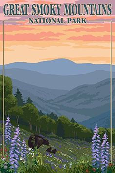 Bears and Spring Flowers - Great Smoky Mountains National... https://www.amazon.com/dp/B00N5CLSC4/ref=cm_sw_r_pi_dp_x_eQxZyb8PN55P2