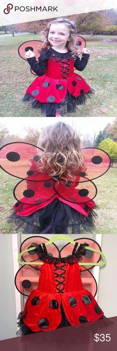 Womens Girls Angel Fairy Bumblebee Ladybird Ladybug Costume Wings headband wing