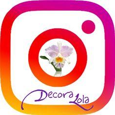 sigue-nuestro-insta-copia_decoralola_fondo_pequeno