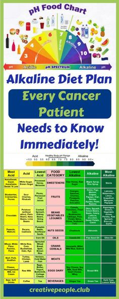 Alkaline Diet Plan That Every Cancer Patient Needs to Know (Immediately!), Alkaline Diet Plan That Every Cancer Patient Needs to Knockout (Immediately!) Alkaline Diet Plan That Every Cancer Patient Needs to Knockout (Immediat. Alkaline Diet Plan, Alkaline Diet Recipes, Alkaline Foods Benefits, Foods High In Alkaline, Alkaline Foods Dr Sebi, Diet And Nutrition, Health Diet, Nutrition Guide, Holistic Nutrition
