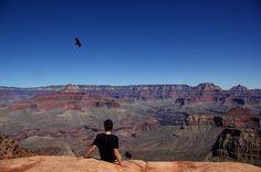 Just casually chilling at the edge watching the #eagle circling  above  #chilling #chillin #edge #grandcanyon #nationalpark #notafraid