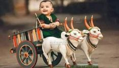Cute Little Baby, Little Babies, Krishna Photos, Good Afternoon, Morning Wish, Good Morning Images, Beautiful Family, True Friends, Childhood