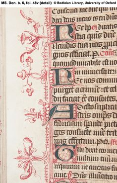 Illuminated Manuscript fol. 48v (detail) Penwork, with fleur-de-lis.