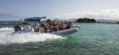 Water Taxi a Isla de Lobos