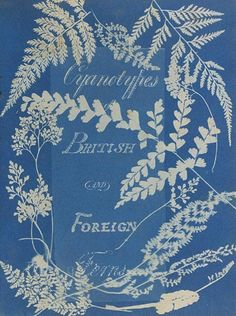 Cyanotypes of British and Foreign Ferns; Anna Atkins (British, 1799 - and Anne Dixon (British, 1799 - Cyanotype; Nature Prints, Book Cover, Inspiration, History Of Photography, Photography, Cyanotype, Sun Prints, Pictures, Prints