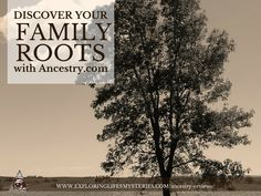 Trace Your Ancestral Roots, Discover What Mysteries Lurk Within Your Family Tree & Much More.