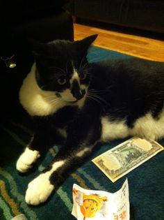Halloween money Shooter