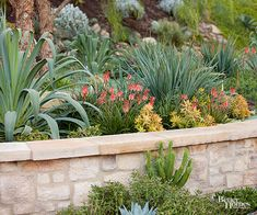 18 Fire-Smart Landscaping Tips