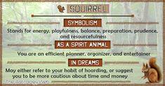 Spirit Animal: Definition and List of Totem Animals Find Your Spirit Animal, Spirit Animal Totem, Animal Spirit Guides, Animal Totems, Animal Meanings, Animal Symbolism, Dream Symbols, Dream Meanings, Animal Medicine