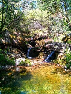 Boa tarde :) Em dias de calor muito intenso nada melhor do que as águas frescas e cristalinas das pequenas lagoas da montanha de Arcos de.  Na imagem o rio Grande  na Tfavanca