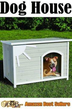 Outside Dog Houses, Outside Dogs, Wood Dog House, Dog Muzzle, Cat Harness, Animal Nutrition, Service Dogs, Dog Photos, Pet Accessories