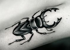 Insect Tattoo by Kamil Czapiga - http://worldtattoosgallery.com/insect-tattoo-by-kamil-czapiga-7/