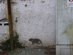 Who is painting those rats in our neighborhood ? photo mirjam Bruck-Cohen
