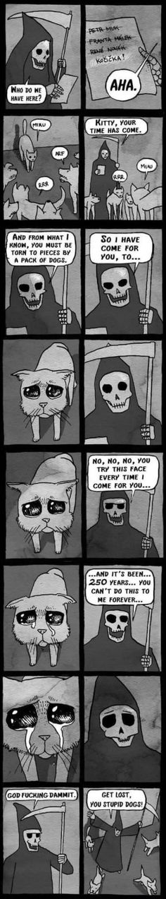 The cat and the Grim Reaper