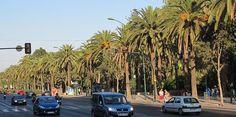 Viaje primaveral para conocer Málaga - http://www.absolutmalaga.com/viaje-primaveral-para-conocer-malaga/