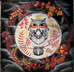 Johanna Basford coloring owls enchanted forest prismacolor premiere pencils nupastels