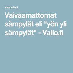"""Vaivaamattomat sämpylät eli """"yön yli sämpylät"""" - Valio.fi"""
