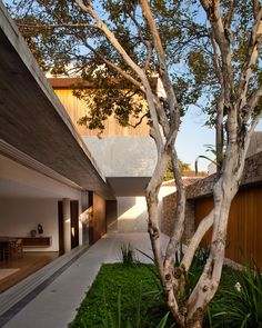 There is goes again being all gorgeous.  House 6 / Marcio Kogan