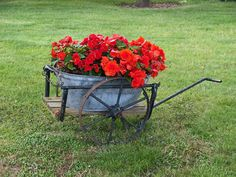 Check out these 27 wheelbarrow flower planters ideal for yard decoration. Antiques, DIY options and some creative ways to display flowers. Rustic Planters, Diy Planters, Planter Ideas, Garden Planters, Garden Wagon, Garden Cart, Wooden Garden, Wooden Diy, Flower Planters
