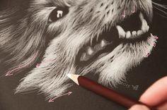 Artystyczne Ciekawostki Marcysibush: Jak Rysować Sierść BiałąKredką na Czarnym Papierze ?