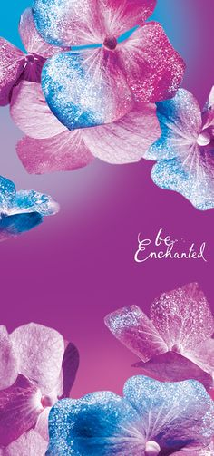 Enchantment right at your fingertips! Get our exclusive #BeEnchanted mobile wallpaper today on the Daily Bubble blog!