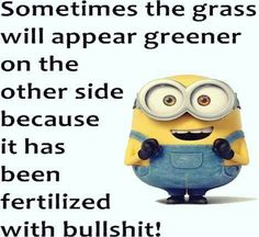 Minions fun quotes of the hour (11:38:06 AM, Wednesday 24, February 2016 PST) – 10 pics