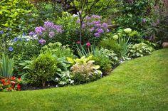 Pflegeleichter Garten: ein Garten für Faule
