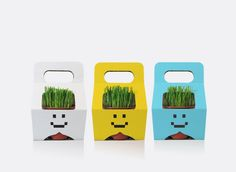 Cool packaging concept for potted plants.    This packaging characterizes the shape and one piece self-locking design that is easy to use. It is made of corrugated board. The four cut-outs on the packaging will not only make the plant part of the decoration, but also lock the edges of the pod when you lift the packaging.