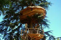 Cabane des énigmes - Cabane dans les arbres pour couple proche de Bordeaux
