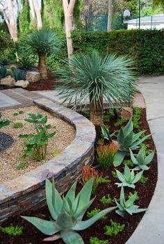 Desert walkway ideas several great for backyard desert for Plants for pool area