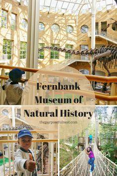 Fernbank Museum Atlanta with kids