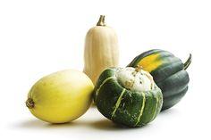 Légumes-Courge d/'hiver-Honey Bear F1-45 Graines-gros