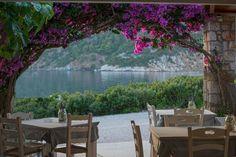 Skyros island , Greece