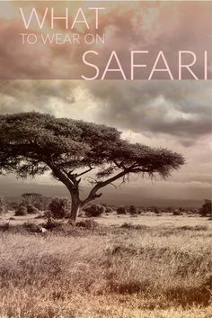 Wondering what to wear on safari in Africa? From South Africa to Kenya to Tanzania, here is the ultimate safari packing list.