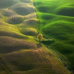 Stunning Green Landscapes by Marek Kiedrowski and Krzysztof Browko