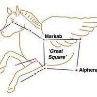 Pegasus (the Flying Horse) Constellation  #astronomy