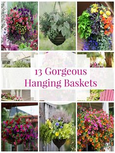 I have rounded up some of the most beautiful hanging baskets around the web. Some of these images were pins on Pinterest but did not ...