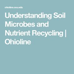 Understanding Soil Microbes and Nutrient Recycling | Ohioline