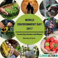 Connecting People to Nature', the theme for World Environment Day 2017, implores us to get outdoors and into nature, to appreciate its beauty and its importance, and to take forward the call to protect the Earth that we share. #trees #nature #Environment #Earth #life #world2017#5thJune#ProtectOurNature #5thJune. #trees #nature #Environment #Earth #life #world2017