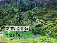Amazing things to do in Bali
