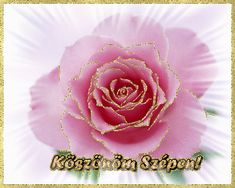 Flowers, Plants, Roses, Creative, Pink, Rose, Plant, Royal Icing Flowers, Flower