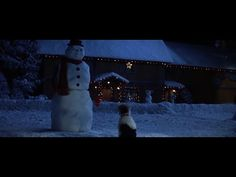 Jack Frost (1998) | Chester wants to play - YouTube Christmas Videos, Jack Frost, Best Memories, Chester, Play, Youtube, Youtubers, Youtube Movies