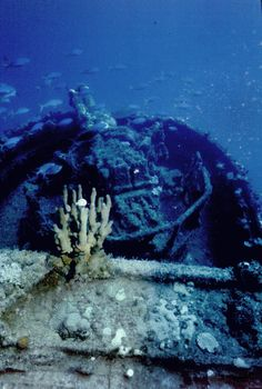 Wreck of the USS Saratoga (CV-3)