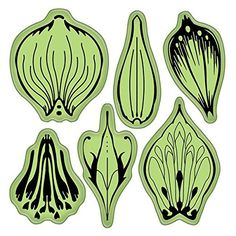 Inkadinkado Stamping Gear Cling Stamps, Flower Petals Inkadinkado http://www.amazon.com/dp/B007WDTPQS/ref=cm_sw_r_pi_dp_i-sqvb1AWSVNV