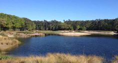 The Caledonia Golf And Fish Club in Pawleys Island, S.C. http://www.globaltravelerusa.com/pawleys-island-s-c-caledonia-golf-and-fish-club/ (Photo: A pond on the course © Francis X. Gallagher)