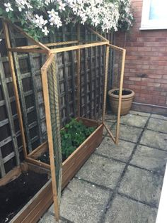 Over planter cage with doors to protect fruit plants from birds.